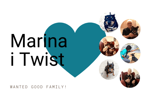 Fundacio Hope & Help Post Blog Adopcio Twist CAT